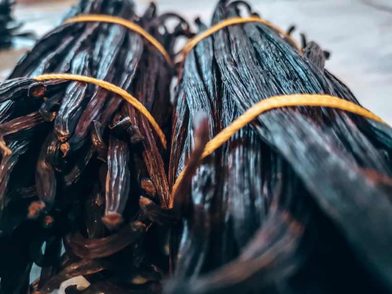 VANILHA vanilla baunilha island west africa agriculture farmers transformation covid-19 spice épices nature orchidées caviar pollinisation